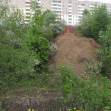Собственники ГСК 112 нарушили ландшафт, и уничтожили декоративные деревья