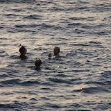 Egypte-2012 - 100_8635.jpg