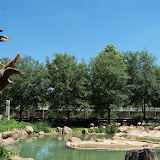 Houston Zoo - 116_8451.JPG