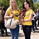 OIC - ENTSIMAGES.COM - Pola Pospieszalska K9 Angels  and Victoria Eisermann K9 Angels at the Puppy Farming Protest - demonstration and photocall 24th May 2016, rally and photocall in London's Parliament Square to raise awareness of the UK's cruel puppy farming trade, in association with PupAid, Boycott Dogs4Us and C.A.R.I.A.D.  Photo Mobis Photos/OIC 0203 174 1069