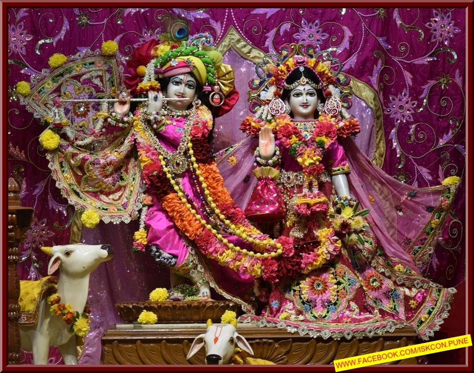 ISKCON Pune Camp Deity Darshan 09 Jan 2017 (10)