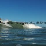 DSC_5850.thumb.jpg