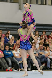 Han Balk Fantastic Gymnastics 2015-8732.jpg