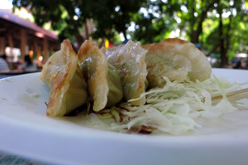 fried dumplings stuffed with chicken and cabbage