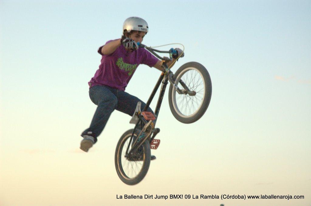 Ballena Dirt Jump BMX 2009 - BMX_09_0157.jpg