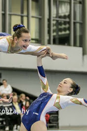 Han Balk Fantastic Gymnastics 2015-9091.jpg