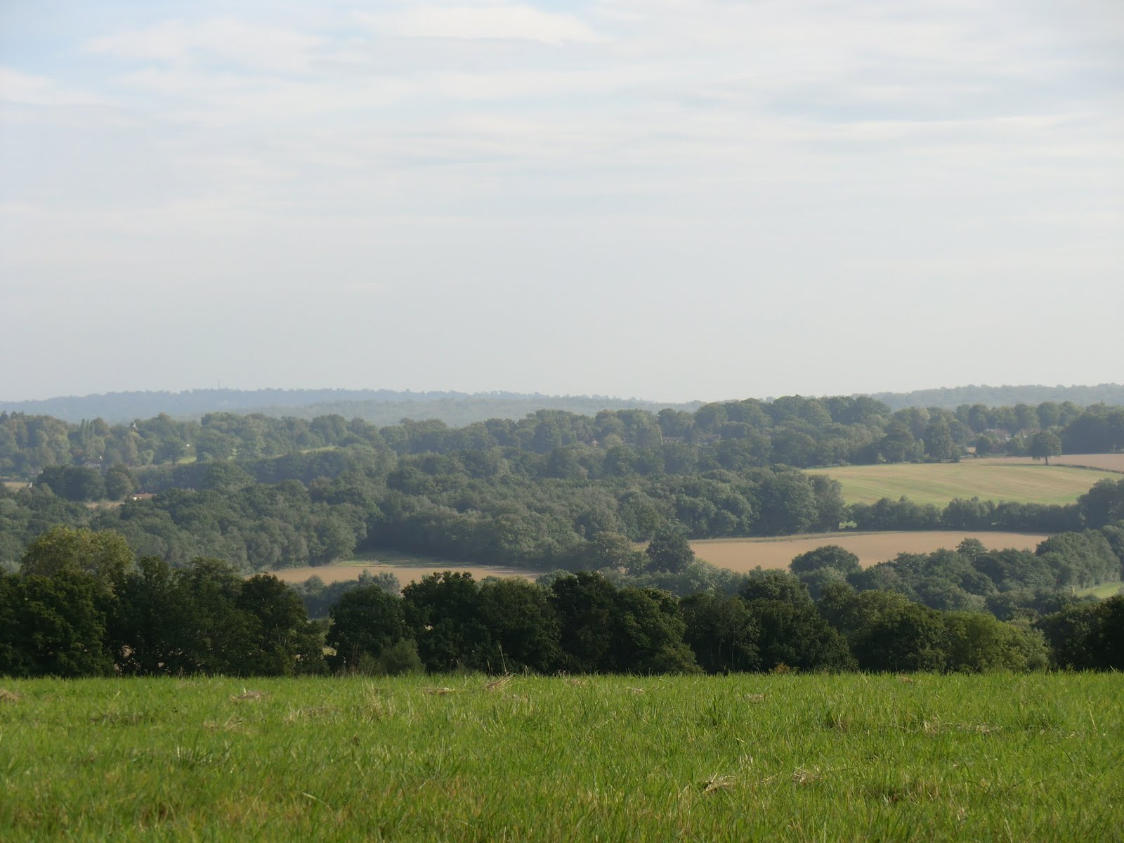 CIMG8791 Looking south across the Medway valley