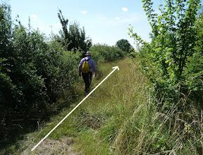 10k 3.6km, Follow Path between Hedges