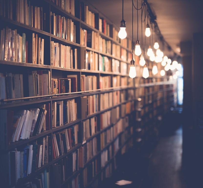 [books-2596809_1280%5B3%5D]