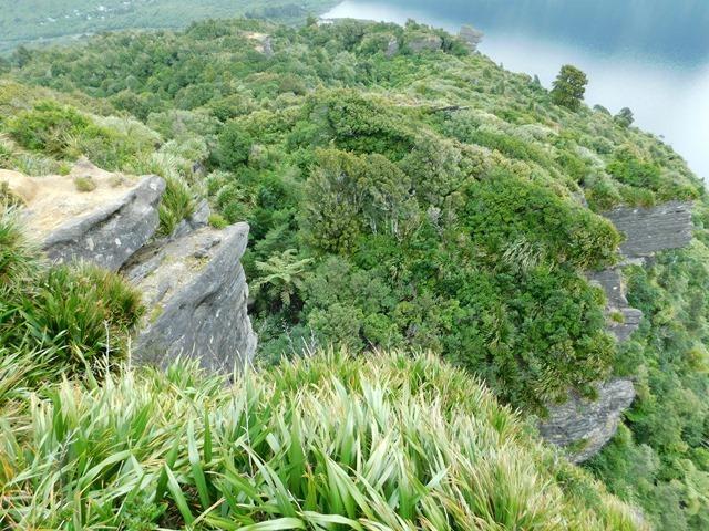C25_NZ NI Te Urewera NP_2018-05-12_DSCN9461