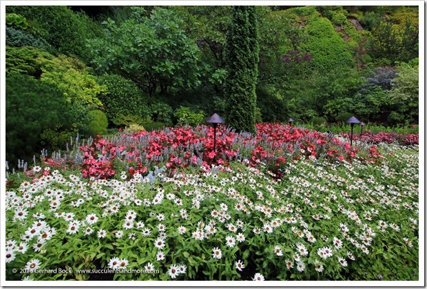 160906_Butchart_Gardens_0045