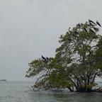 Isla Maravilla