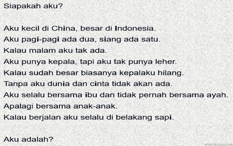 Teka-teki Asah Otak Siapakah Aku Aku Kecil di Cina Besar di Indonesia