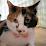 Miaou's profile photo