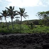 Hawaii Day 5 - 114_1539.JPG