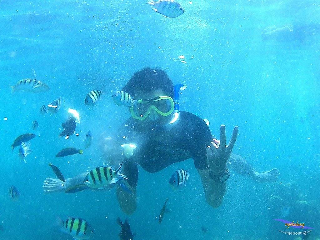 pulau harapan, 29-30 agustus 2015 SJCam 16