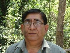 madhu bhushan sharma