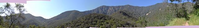 panorama of the canyon rim