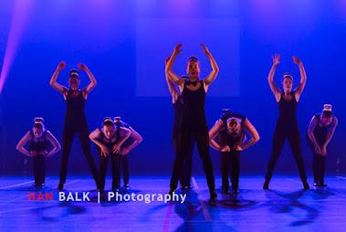 Han Balk Voorster Dansdag 2016-4250-2.jpg