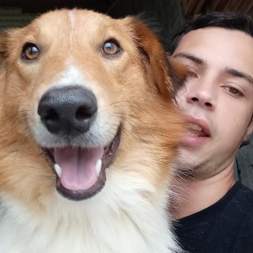 Luis FIlipe DogZ