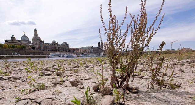 A large part of the Elbe river bed is dried out during a long time of drought in front of the skyline with the Frauenkirche cathedral (Church of Our Lady) in Dresden, Germany, Monday, 9 July 2018. Photo: Jens Meyer / AP Photo