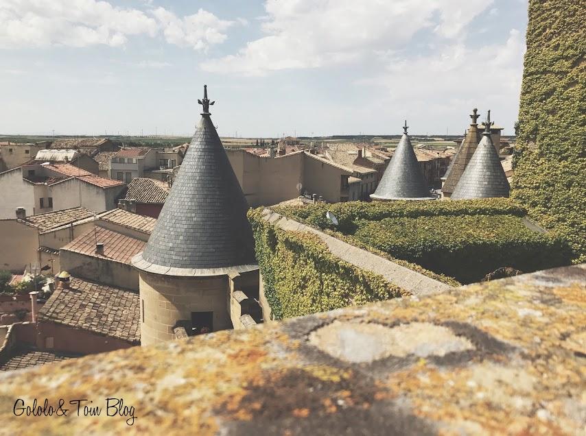 Vistas desde el Castillo palacio de Olite en Navarra