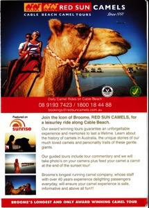 Camel Brochure
