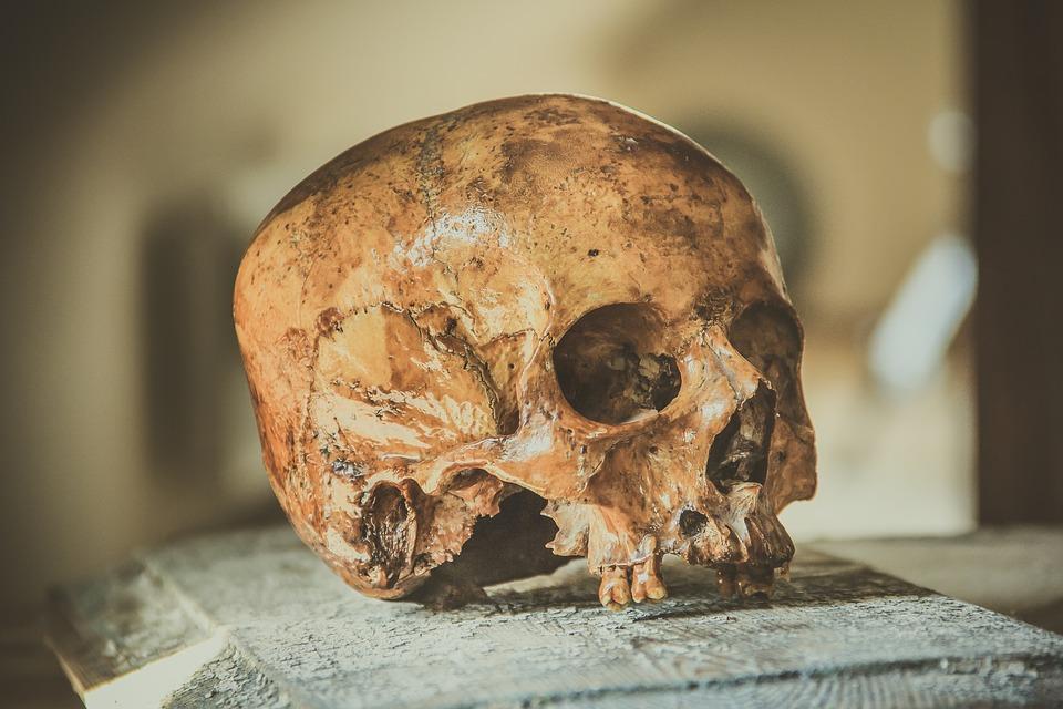 ¡Sacrificio de Niños!: Arqueólogos descubre restos del mayor sacrificio de infantes en la historia