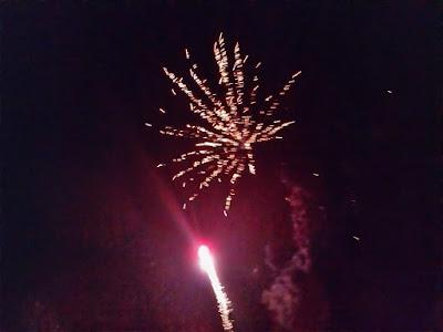 Firework Meet 2015