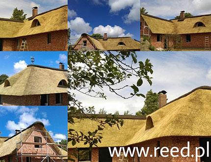 Zbiór dachów trzcinowych