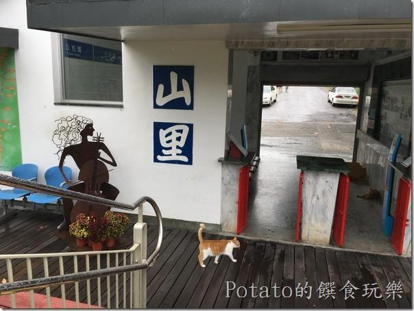 山里車站-站內貓