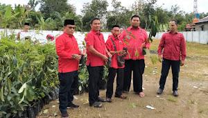 HUT 48 Partai, DPC PDI P Muratara Bagikan 1000 Bibit Sengon dan 1000 Nangka Sayur ke Masyarakat