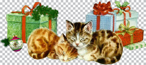 Christmas cats01_dédé.jpg