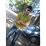 Sankha Ghosh's profile photo