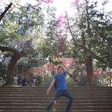 2014 Japan - Dag 7 - jordi-DSC_0338.JPG