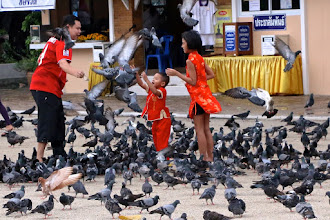 Photo: children playing with pigeons outside Wat Phra Mahathat, Nakhon ST