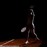Andrea Petkovic - 2016 Porsche Tennis Grand Prix -DSC_6041.jpg