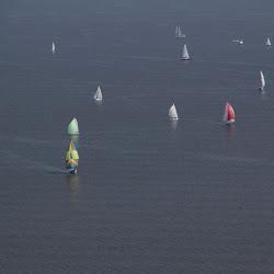 Dauphin Island Race 2013 063