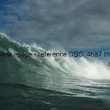 DSC_4687.thumb.jpg