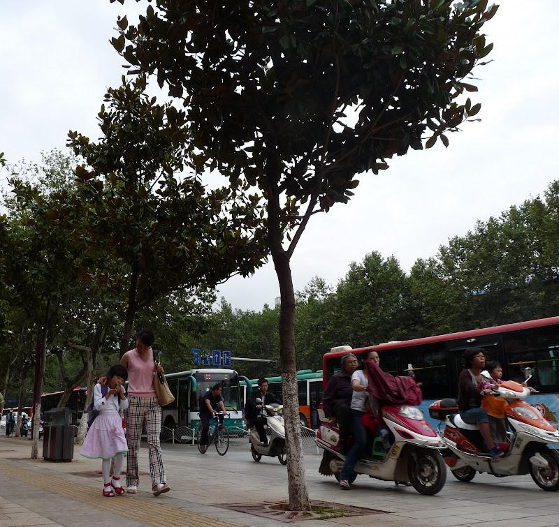 CHINE.YUNNAN.KUN MING Temple, jardin horticole,Musée des minorites - P1270390.JPG