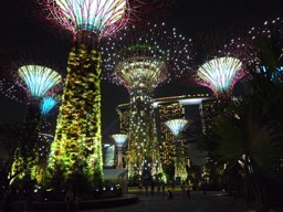 Supertree Grove Gardens by the Bay Singapore 20120630 04