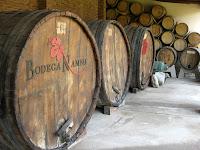 Nanni - a small organic winery in Cafayate