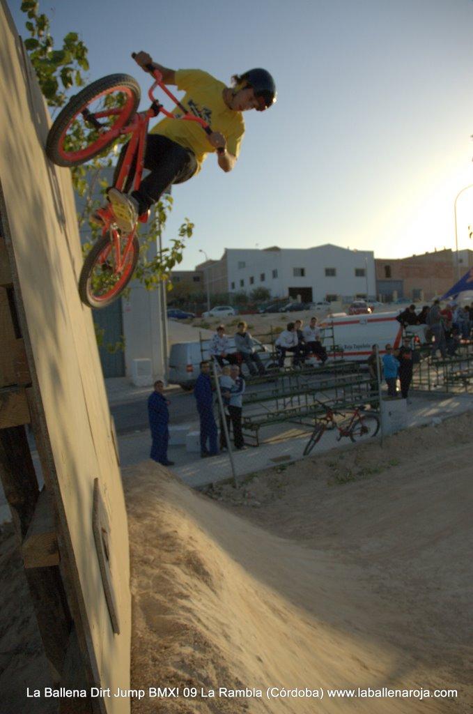 Ballena Dirt Jump BMX 2009 - BMX_09_0121.jpg