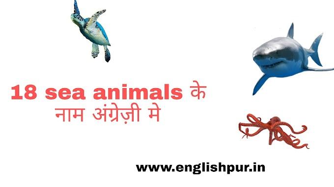 18 sea animals के नाम अंग्रेज़ी मे