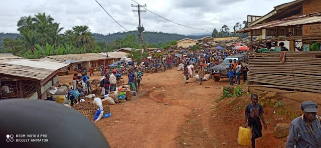 Anglophone Crisis: Bafut Breathes Again