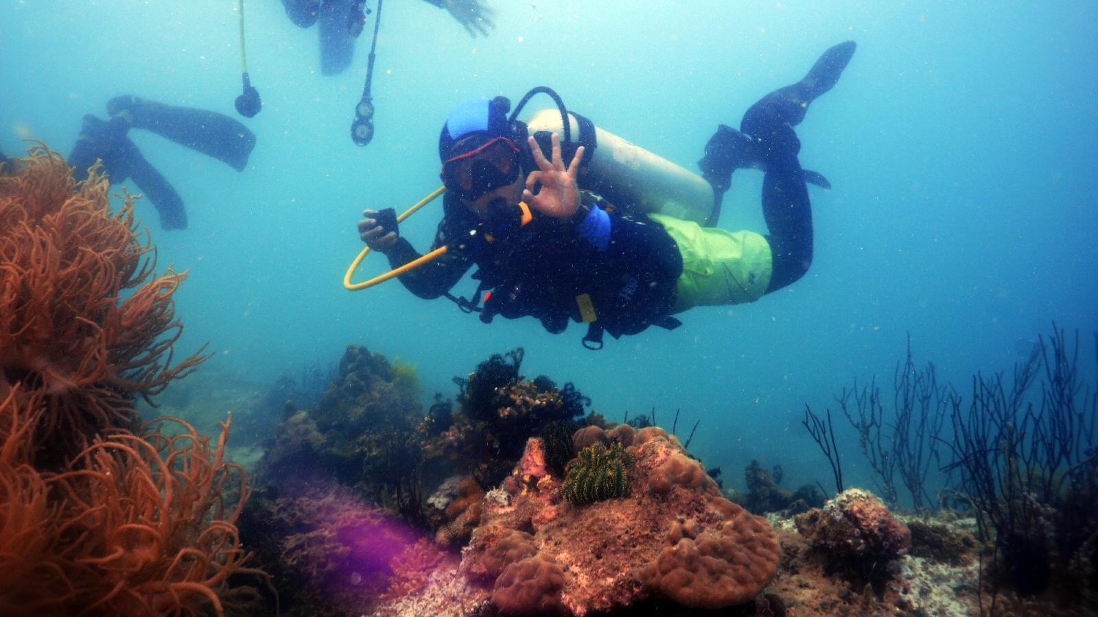 PAKET TOUR PAHAWANG 1 HARI (ODT) Snorkeling - Diving