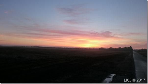 morgenstund200317