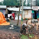 2011-09_danny-cas_ethiopie_040.jpg
