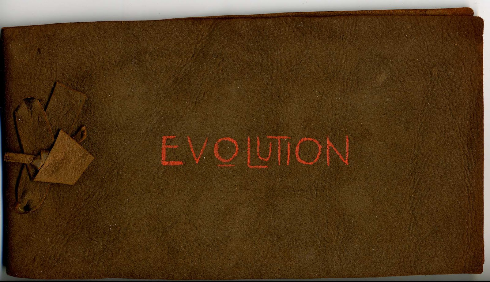 Evolution Poem - Langdon