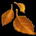 fallen-leaf_1f342